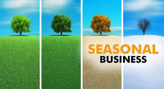 Seasonal Businesses